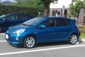 car_pet